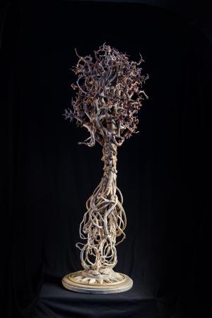 И корни увидели свет